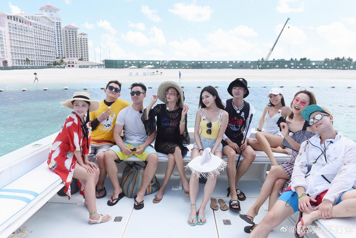 张雨绮《各位游客请注意》对话海岛动物尽享趣味时光